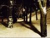 kopia-z-park-noc