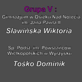 Kopia_zapasowa_Grupa V