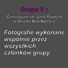Grupa V fot. wspólne