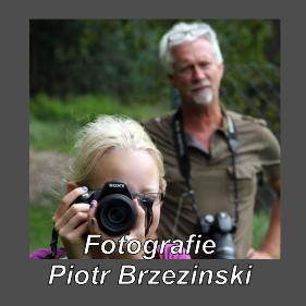 Piotr Brzezinski Fotografie